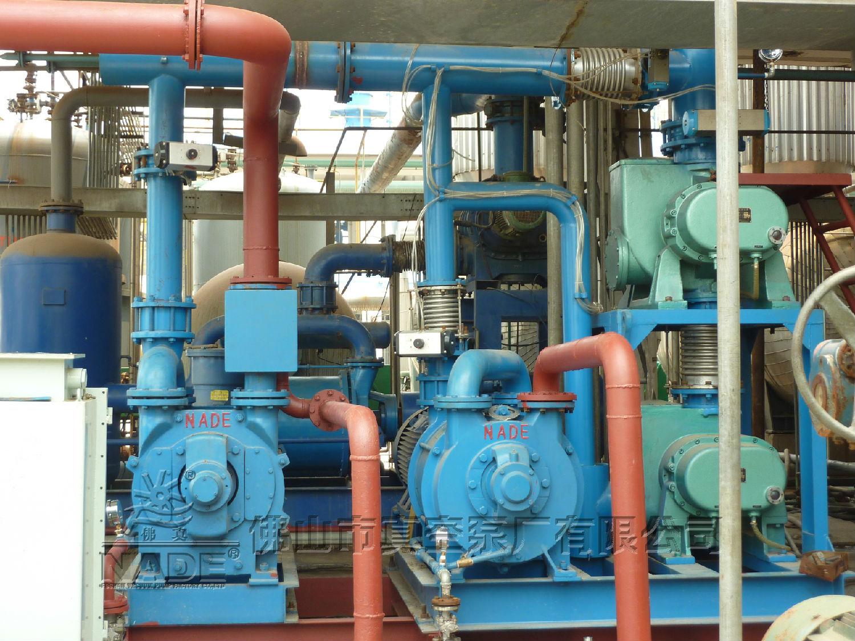 2SK系列水环式热博登录应用在化工行业