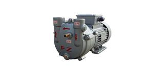 水环式真空泵ZKB-24