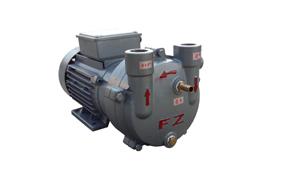 水环式真空泵ZKB-110