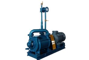 2SK-P1水环式真空泵